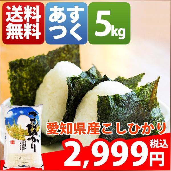 お米 5kg 安い 愛知県 白米 こしひかり 5キロ 29...