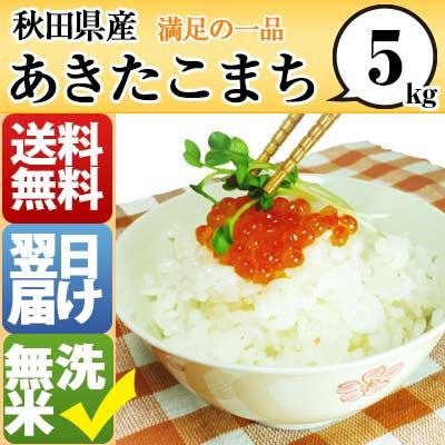 秋田県 無洗米 1等米 100% あきたこまち 5kg 平...