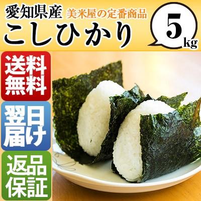 愛知県 白米 100% こしひかり 5kg 平成28年度 【...