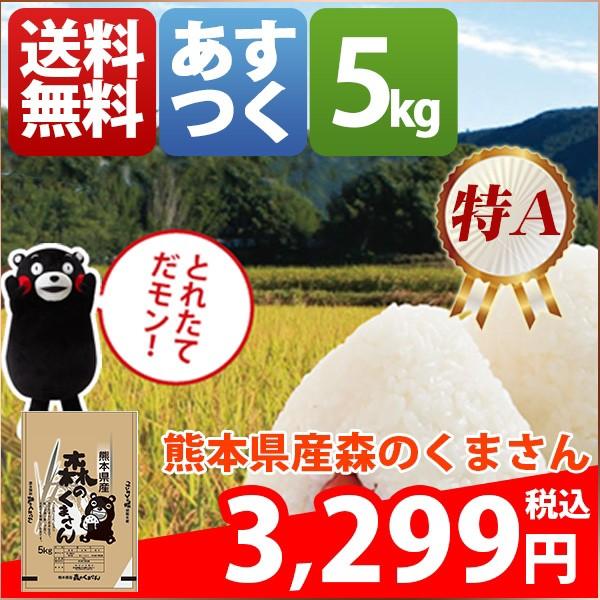 お米 5kg 安い 熊本県 白米 森のくまさん 5キロ 2...