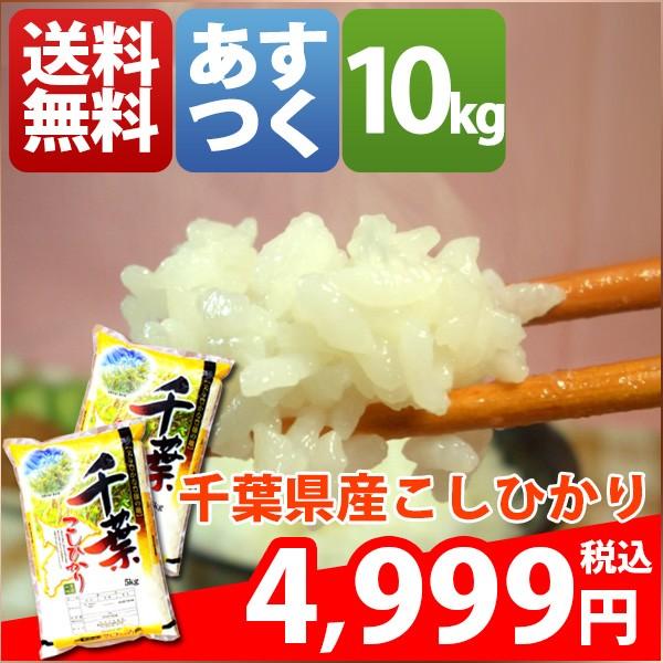 お米 10kg 安い 1等米 千葉県 白米 こしひかり 10...
