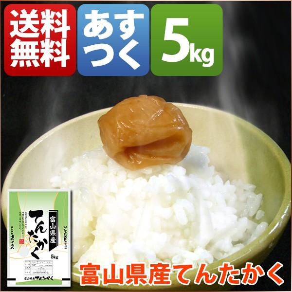 新米 米 てんたかく 5kg お米 29年産 富山県 白米...