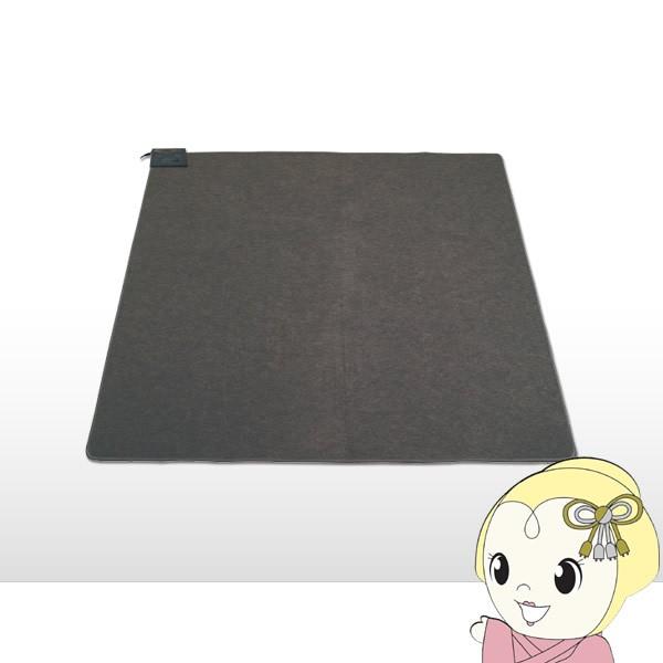 【在庫僅少】テクノス ホットカーペット 2畳用 TW...