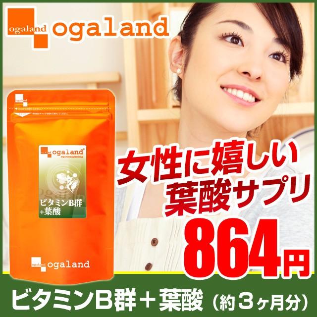 お徳用ビタミンB群+葉酸(約3ヶ月分)3150円以上送料無料 ビタミンM 栄養 健康 美容 ダイエット サプリメント