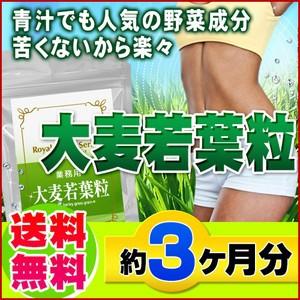 【業務用 大麦若葉粒 270粒】[メール便対応商品...