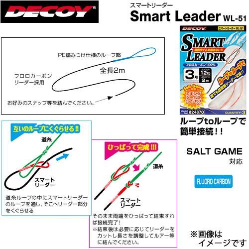 ●デコイ スマートリーダー WL-51 【メール便配...