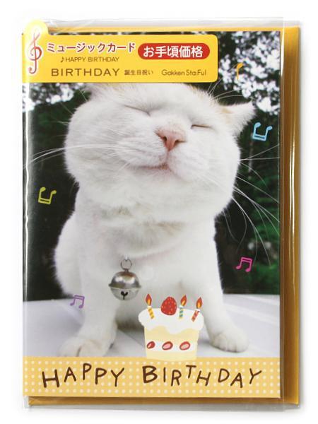 かご猫バースデーミュージックカード(ケーキ) B38...