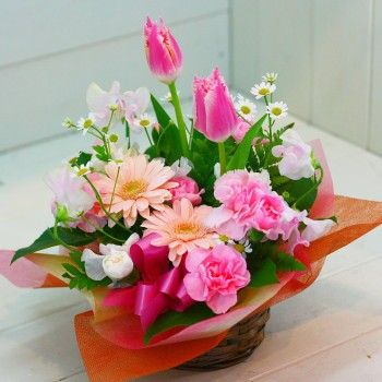 【発表会の花 父の日 84】 おまかせ!ピンク...