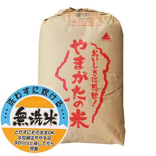 【送込】新米 【無洗米】もち米 29年産山形県産ヒ...