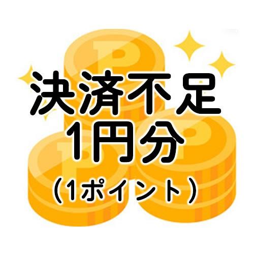 【送込】不足分決済1円分(不足送料・オプション...