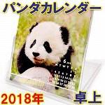 2018年卓上パンダカレンダー★ベイビーパンダ(FD...