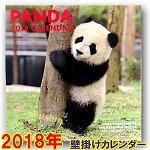 2018年壁掛けパンダカレンダー(正方形)
