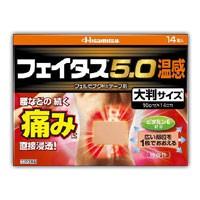 (税制対象) 【第2類医薬品】 フェイタス5.0 ...