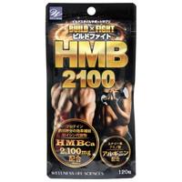 ビルドファイト HMB2100 120粒 45732612203...