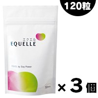【送料無料】大塚製薬 エクエル  パウチ 120粒入...
