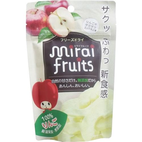 未来果実 ミライフルーツ りんご 12g入 13371