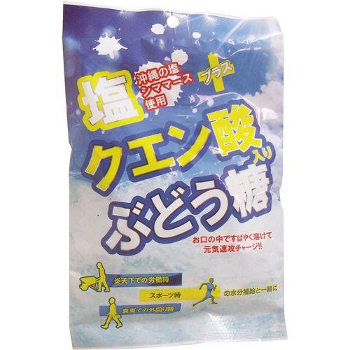 大丸本舗 塩+クエン酸入り ぶどう糖 2g×20...
