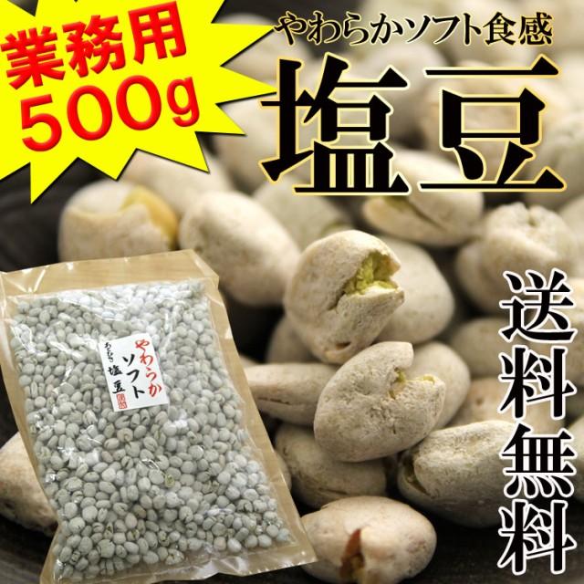 【全国送料無料】飲食店御用達☆業務用500g入りソ...