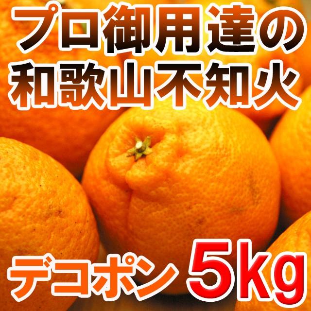 【送料無料】プロ御用達☆訳あり和歌山の不知火(...