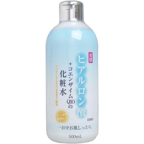 メール便送料無料 ヒアルロン酸+コエンザイムQ10...