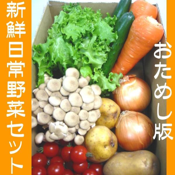 さんきん新鮮日常野菜セット!おためし版