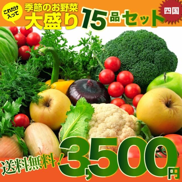 【送料無料・チルド商品】四国の田舎で取れた季節のお野菜、たっぷり15品盛りあわせ