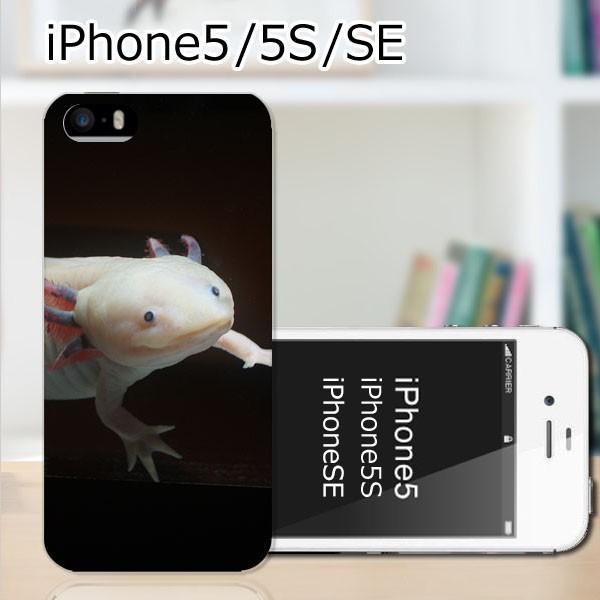 iPhone5 TPUケース/カバー 【ウーパールーパー TP...