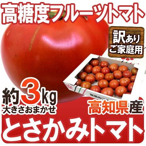 【送料無料】高知県夜須産 高糖度 夜須のフルーツ...