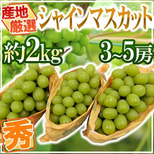 """""""シャインマスカット"""" 秀品 3〜5房 約2kg 産地..."""