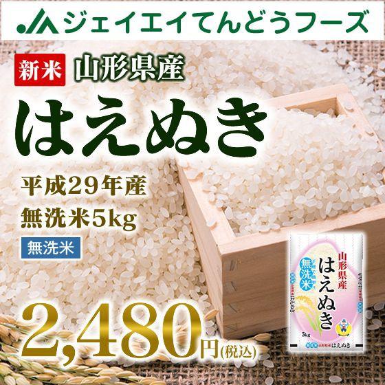 新米 山形県産 はえぬき 無洗米 5kg 平成29年産
