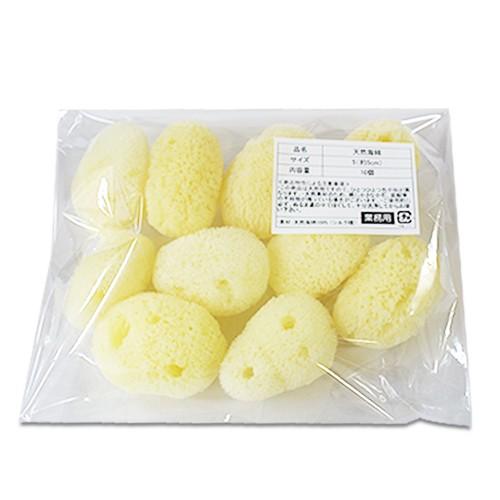 【業務用】天然海綿シルク サイズ5(約5cm)1袋10...