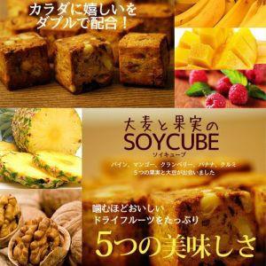 大麦と果実のソイキューブ 食物繊維 ドライフルー...