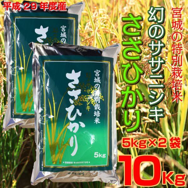 新米 29年産 宮城県産特別栽培米 ささひかり 10kg...