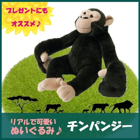 TST ぬいぐるみ101  ぶら〜りぃず チンパンジー ...