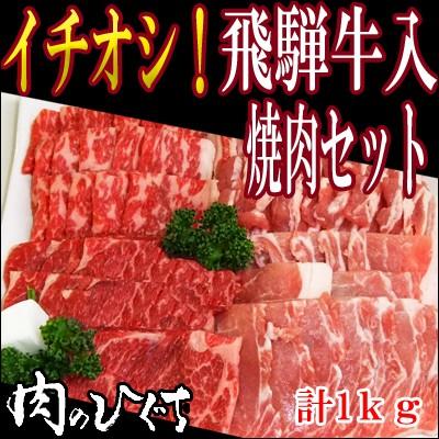 【肉のひぐち】(冷凍)送料無料 飛騨牛&国産豚...