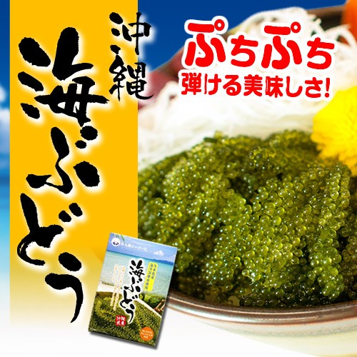 海洋深層水使用 ぷちぷち海ぶどう 60g 沖縄土産...