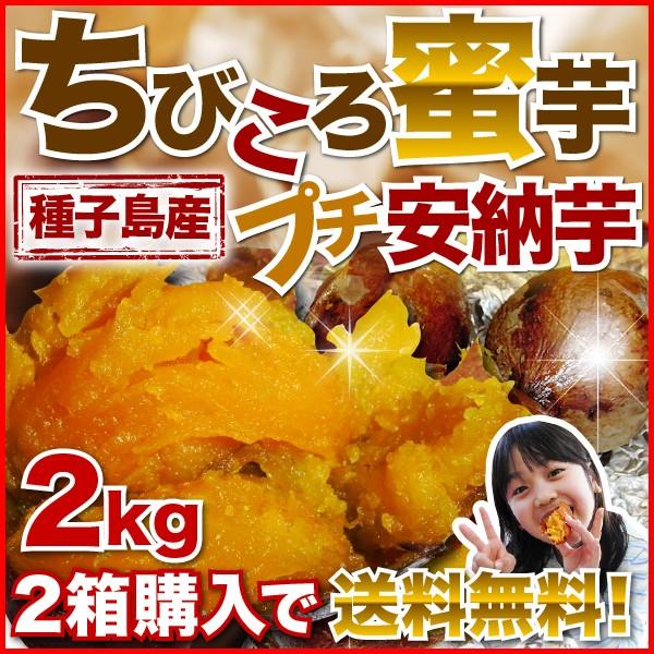 安納芋 訳あり あんのういも 安納いも 種子島産 産地直送 プチ安納芋2kg 2箱ご購入がお得 ちびころ蜜芋2kg 12月初旬より順次出荷