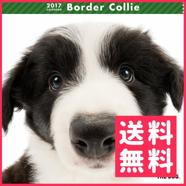 【お取寄せ品】アーリスト THE DOG カレンダー ...