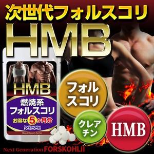 【HMB フォルスコリ 約5ヶ月分 150粒】[メール便...
