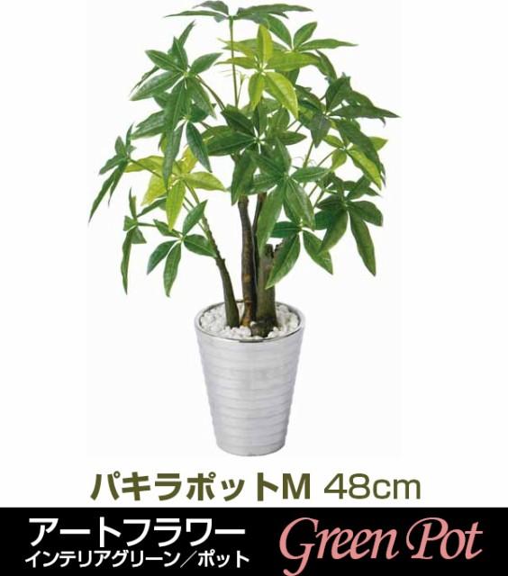 【観葉植物】GLA-1207 パキラポットM @2210円...