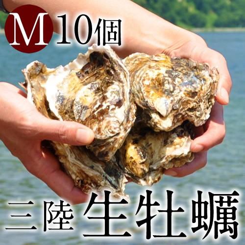 生ガキ 生牡蠣 M 10個 殻付き 生食用 生カキ 宮城...