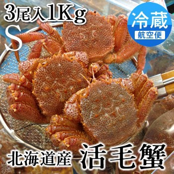 毛ガニ 冷蔵 北海道産 活毛蟹1kgセット 3尾入  小...