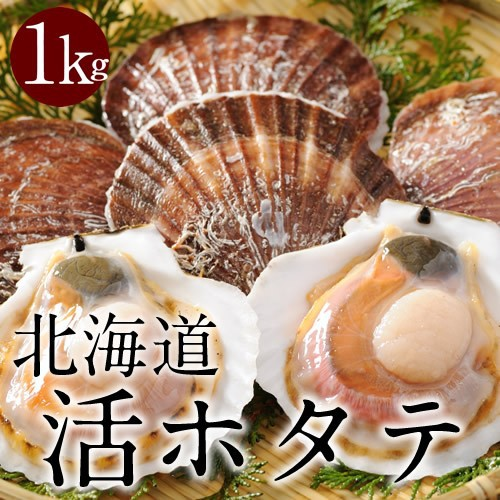 北海道産 活ホタテ貝 1kg  冷蔵 とれたて新鮮 刺...