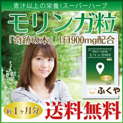 お試し モリンガ サプリ (約1ヶ月分・90粒) 1日...