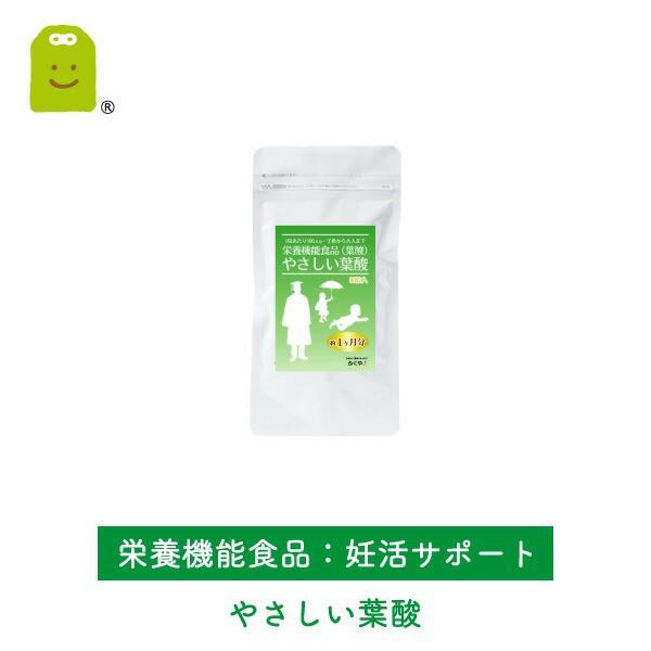 お試し 葉酸サプリ (約30日分・60粒入)【メール...