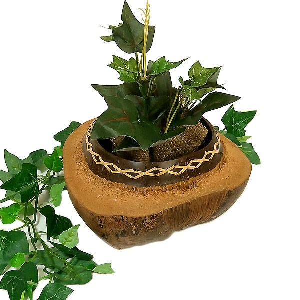 ココナッツの小物入れ 椰子のプランター 植木鉢 ...