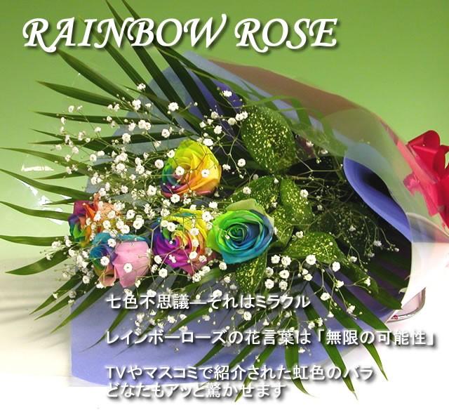 【送料無料】 虹色のバラレインボーローズミラク...