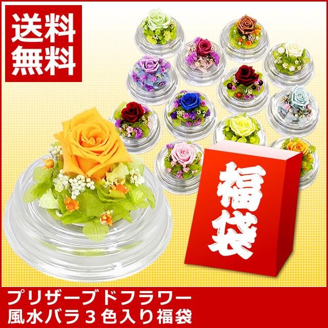 【誕生日】 【花】 タイムセール!枯れない風水バ...