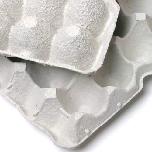 紙製卵トレー 45×29cm 10枚セット 昆虫 コオロギ 飼育 ハウス ケース