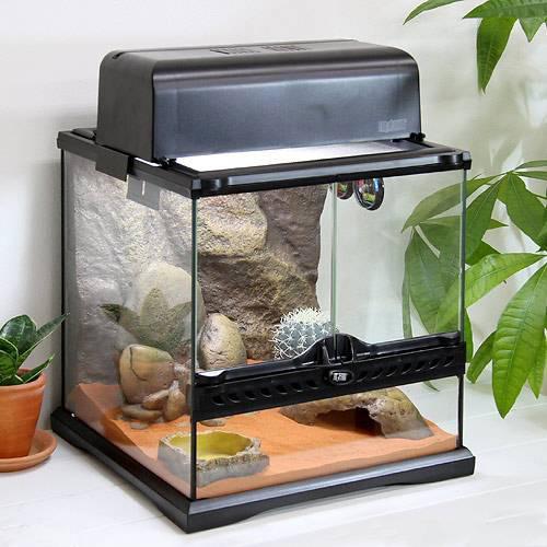GEX エキゾテラ ハビタットキット デザート 爬虫類飼育11点セット(砂漠環境用) ジェックス